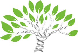clipart tree made of DNA