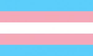 Transgender flag (light blue, light pink, and white stripes)
