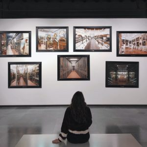person viewing art on a wall